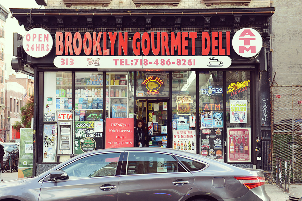 brooklyn-williamsburg-north13