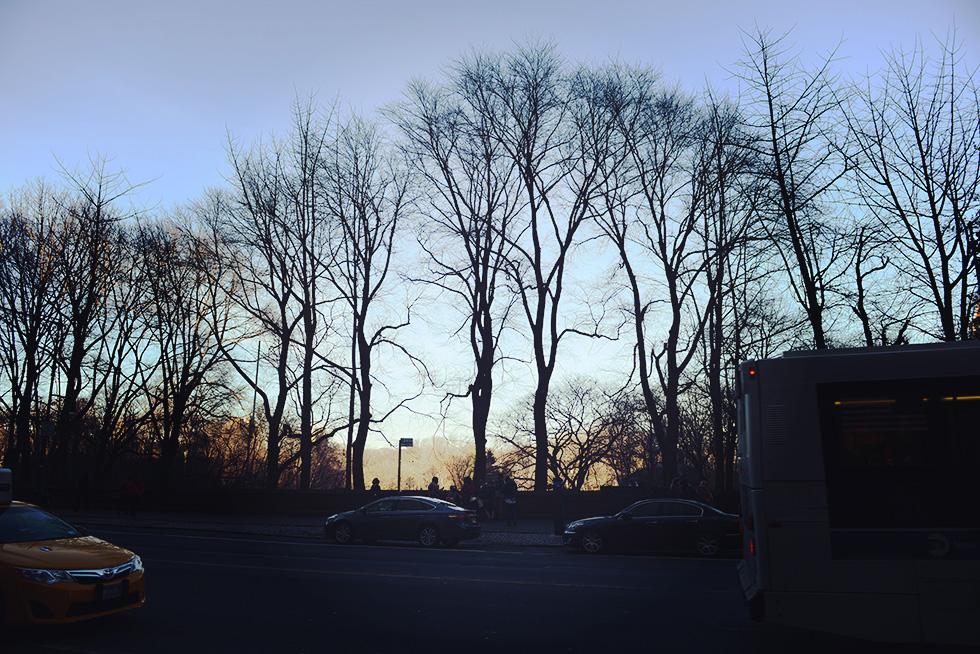 セントラル・パーク