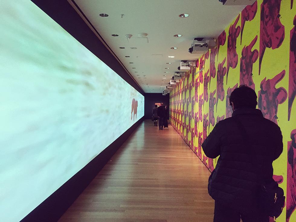 MoMA3階の廊下
