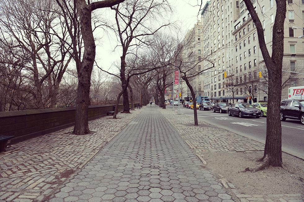 セントラル・パーク沿いの歩道